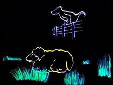 filmbild_nachts-sind-alle-katzen-bunt